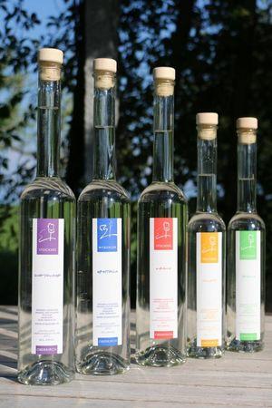 Weinbau Haselrain
