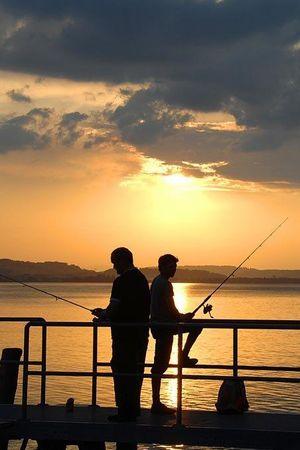 Fischen am Sempachersee