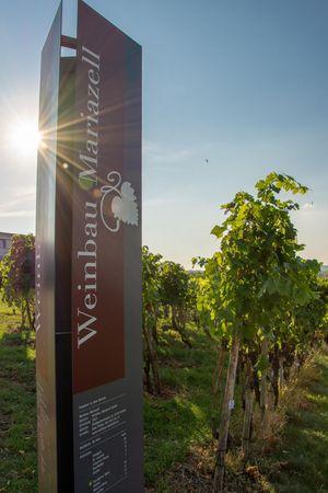 Weinbau Mariazell