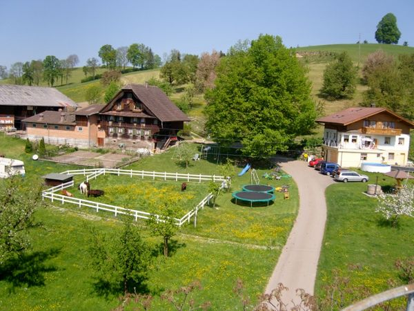 Ferienhof Farnere Swiss-Lodge