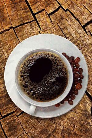 Kaffee Rösterei Knubel AG