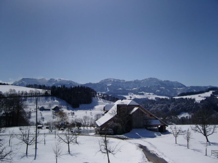 Swiss-Lodge